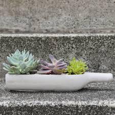 concrete wine bottle planter by dingading terrariums
