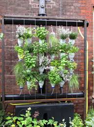 wallpaper for small space gardening ideas beginners