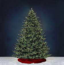 real christmas tree delivery nyc plantshed com