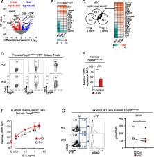 control of regulatory t cell differentiation by the transcription