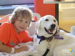 volunteer with the dog therapy program chla