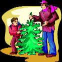 oregon christmas tree farms choose and cut christmas trees tree