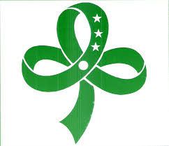 girl scout ribbon s girl scouts of the philippines bukidnon council