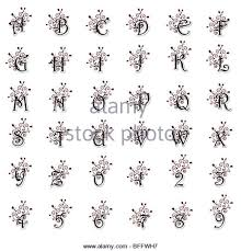 floral black white capital letters stock photos floral black