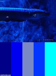 3070 best colors 8 images on pinterest color schemes color