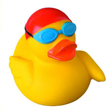 swimmer rubber duck buy premium rubber ducks world wide