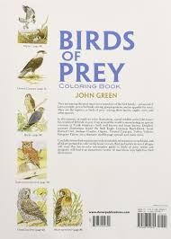 birds of prey coloring book john green 9780486259895 amazon com