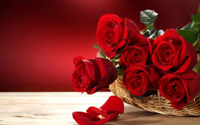 Red Rose Bouquet Wallpaper Download 5120x3200 Beautiful Red Roses Bouquet In A Basket