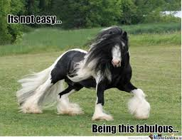 Fab Meme - its not easy being this fab by theswaindawg meme center