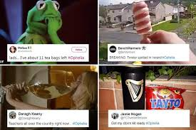 Ireland Memes - hurricane ophelia memes shared by the plucky irish as they prepare