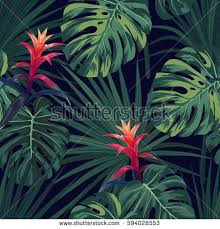 hawaiian plants tropical background hawaiian plants flowers stock vector