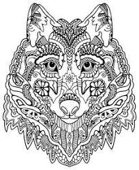 coloring pages zebra colorear coloring