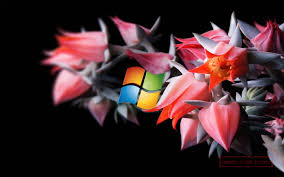 free live wallpaper for pc windows 8 free live wallpapers pc