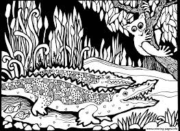 africa crocodiles coloring pages printable