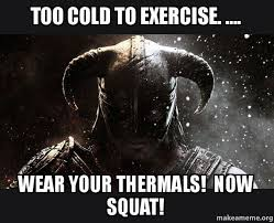 Exercise Meme - too cold to exercise wear your thermals now squat skyrim