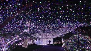 500 000 lights family s display sets world record wunc