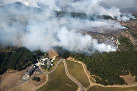 Wildfire Burning Near Me by Jewish Camp In Northern California Ravaged By Forest Fire The
