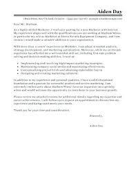 Babysitter Resume Template Sample Resume For Babysitter Resume Sample Nanny Curriculum Vitae