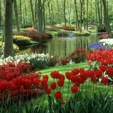 garden interesting flower garden designs enchanting flower