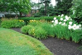 Backyard Plant Ideas Garden Design Garden Design With Perennial Small Garden Designs
