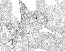 coloring pages sea turtle zentangle doodle coloring