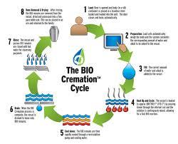 the bio cremation process