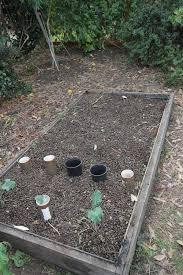 Horse Manure Vegetable Garden by Sheep Manure Gift Of The Wooly Beast From The Shearing Shed To You