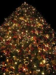 macy s tree lighting boston 2012 macy s enchanted trolley tour and tree lighting boston ma