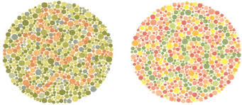 Deuteranopia Color Blindness Trace The Squiggly Line If You Can Website Design Ct Taylor