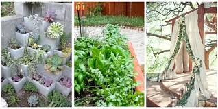 gardening trends u2014 ways to improve your garden