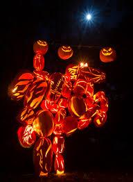 Best Pumpkin Patch Albany Ny by Great Jack O U0027lantern Blaze U2013