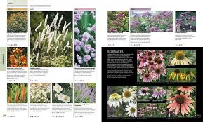 flower encyclopedia rhs encyclopaedia of plants flowers c brickell nhbs book shop