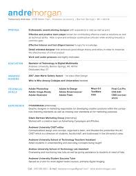 chronological resume minimalist design concept statement exles good profile section with explanations of strengths life