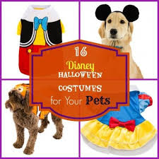 Disney Halloween Costumes Dogs 11 Dog Costumes Images Animals Costumes