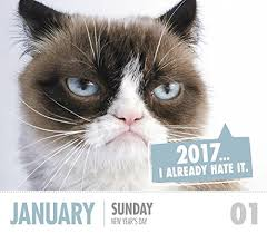 Grumpy Cat Mini Wall Calendar - grumpy cat year in a box calendar 2017 kittymews cat news from