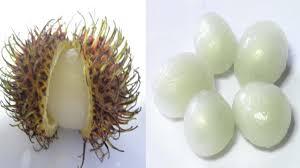 fruit similar to lychee how to eat rambutan youtube