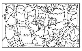 free coloring page of the rainforest jungle coloring pages printable rainforest clipart coloring page
