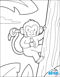 monkey coloring pages hellokids com