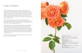 Shade Of Orange Names Vintage Roses Beautiful Varieties For Home And Garden Jane