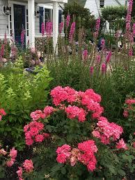 947 best house garden spring 2016 images on pinterest flower