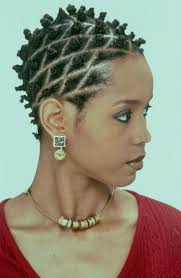 243 best african braids images on pinterest natural hairstyles