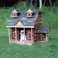cool dog houses day 113 cool dog houses mjg interiors