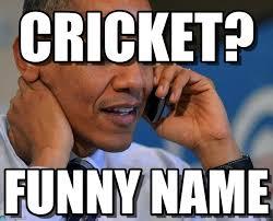 On The Phone Meme - cricket obama on the phone meme on memegen