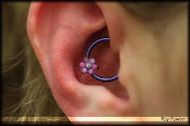 14g daith piercing with anatometal pink and lavender opal flower