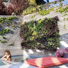1106 best green wall images on pinterest vertical gardens