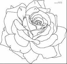 stunning spring flower coloring pages for kids with spring flower