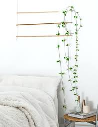 wall decor at home 5 must have home wall decor items for your bedroom home plant wall