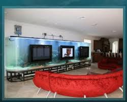 reality show u0027tanked u0027 boosts aquarium sales u2014 photos u2013 las vegas