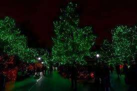 festival of lights cincinnati zoo 2017 there s nothing better this holiday season than festival of lights