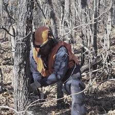 illinois consulting foresters association an association of